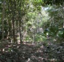 Foto de terreno habitacional en venta en, alfredo v bonfil, benito juárez, quintana roo, 2299108 no 01
