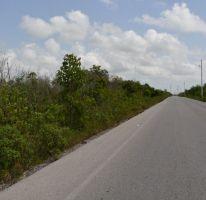 Foto de terreno comercial en venta en, alfredo v bonfil, benito juárez, quintana roo, 2384948 no 01