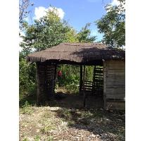 Foto de terreno habitacional en venta en  , alfredo v bonfil, benito juárez, quintana roo, 2610662 No. 01