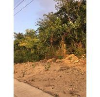 Foto de terreno habitacional en venta en  , alfredo v bonfil, benito juárez, quintana roo, 2894869 No. 01