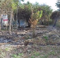 Foto de terreno habitacional en venta en  , alfredo v bonfil, benito juárez, quintana roo, 3267288 No. 01