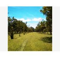 Foto de terreno habitacional en venta en  , alpuyeca, xochitepec, morelos, 2660389 No. 01