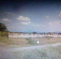 Foto de terreno habitacional en venta en  , alpuyeca, xochitepec, morelos, 3211283 No. 01