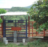 Foto de casa en venta en amacuzac 526, tehuixtla, jojutla, morelos, 1628600 no 01