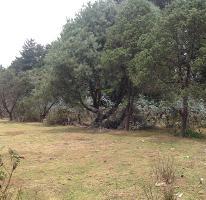 Foto de terreno habitacional en venta en  , amanalco de becerra, amanalco, méxico, 2480924 No. 01