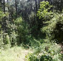 Foto de terreno habitacional en venta en  , amanalco de becerra, amanalco, méxico, 0 No. 03
