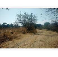 Foto de terreno comercial en venta en  , amayuca, jantetelco, morelos, 2673916 No. 01