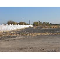 Foto de terreno comercial en venta en  , antunez, parácuaro, michoacán de ocampo, 2586976 No. 01