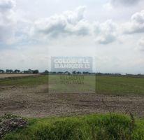 Foto de terreno habitacional en venta en, árbol de la vida, metepec, estado de méxico, 2400468 no 01
