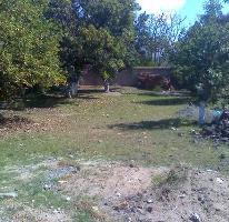 Foto de terreno comercial en venta en  , arboledas, san juan del río, querétaro, 2639984 No. 01