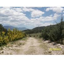 Foto de terreno habitacional en venta en  , arteaga centro, arteaga, coahuila de zaragoza, 2594163 No. 01