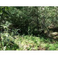 Foto de terreno habitacional en venta en aserradero 0, corral de piedra, san cristóbal de las casas, chiapas, 2415544 No. 01