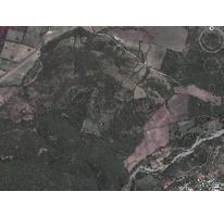 Foto de terreno habitacional en venta en  , atlacholoaya, xochitepec, morelos, 2607139 No. 01