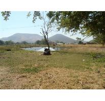 Foto de terreno habitacional en venta en  -, atlacholoaya, xochitepec, morelos, 2684053 No. 01