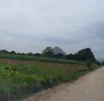 Foto de terreno habitacional en venta en av 5 de mayo 0, san miguel contla, santa cruz tlaxcala, tlaxcala, 2200020 no 01