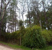 Foto de terreno habitacional en venta en av colibri sn, la cañada, san cristóbal de las casas, chiapas, 1715884 no 01