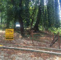Foto de terreno habitacional en venta en av reforma esq 5 pte nte sn sn, la cañada, palenque, chiapas, 1715876 no 01