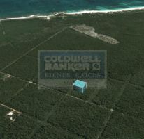 Foto de terreno habitacional en venta en av tulum 319, tulum centro, tulum, quintana roo, 328826 no 01