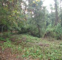 Foto de terreno habitacional en venta en avándaro sn, avándaro, valle de bravo, estado de méxico, 1698030 no 01