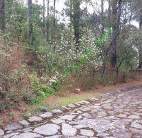 Foto de terreno habitacional en venta en, avándaro, valle de bravo, estado de méxico, 1481513 no 01