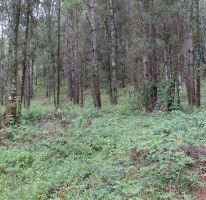 Foto de terreno habitacional en venta en, avándaro, valle de bravo, estado de méxico, 1514244 no 01