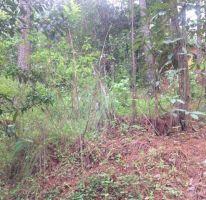 Foto de terreno habitacional en venta en, avándaro, valle de bravo, estado de méxico, 1872420 no 01