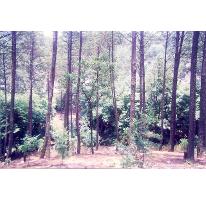Foto de terreno habitacional en venta en  , avándaro, valle de bravo, méxico, 1135429 No. 02