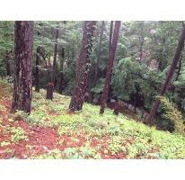 Foto de terreno habitacional en venta en  , avándaro, valle de bravo, méxico, 2037976 No. 01