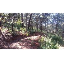 Foto de terreno habitacional en venta en  , avándaro, valle de bravo, méxico, 2477296 No. 01