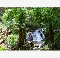 Foto de terreno habitacional en venta en fontana alta , avándaro, valle de bravo, méxico, 2510534 No. 01