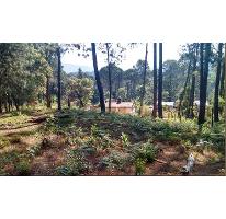 Foto de terreno habitacional en venta en  , avándaro, valle de bravo, méxico, 2587496 No. 01