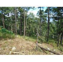 Foto de terreno habitacional en venta en  , avándaro, valle de bravo, méxico, 2746551 No. 01