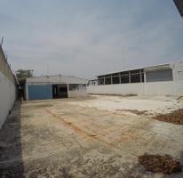 Foto de nave industrial en renta en avenida 4 oriente , puerto pesquero, carmen, campeche, 4214490 No. 01