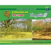 Foto de terreno habitacional en venta en  , villa del actor, villa del carbón, méxico, 2493846 No. 01