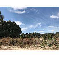 Foto de terreno habitacional en venta en avenida el bajio , el bajío, zapopan, jalisco, 2871561 No. 01