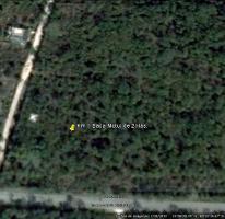Foto de terreno habitacional en venta en  , baca, baca, yucatán, 2378140 No. 01