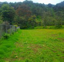 Foto de terreno habitacional en venta en, batan grande, donato guerra, estado de méxico, 2019969 no 01