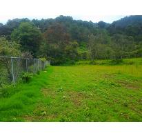 Foto de terreno habitacional en venta en  , batan grande, donato guerra, méxico, 2516112 No. 01