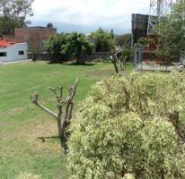 Foto de terreno habitacional en venta en  , bello horizonte, cuernavaca, morelos, 0 No. 01
