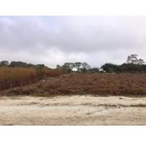 Foto de terreno habitacional en venta en  , berriozabal centro, berriozábal, chiapas, 1042903 No. 01