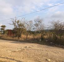 Foto de terreno habitacional en venta en  , berriozabal centro, berriozábal, chiapas, 2955212 No. 01