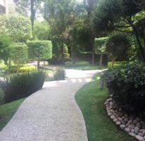 Foto de departamento en renta en Lomas de Chapultepec V Sección, Miguel Hidalgo, Distrito Federal, 4616488,  no 01