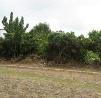 Foto de terreno habitacional en venta en bjorn borg, fracc raquet club manz 2 lote24, san juan cosala, jocotepec, jalisco, 1695254 no 01
