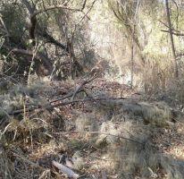 Foto de terreno habitacional en venta en bosque de mazamitla, las cañadas, zapopan, jalisco, 220771 no 01