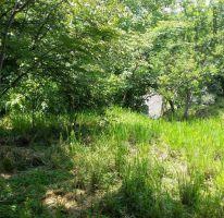 Foto de terreno habitacional en venta en bosque de tapalpa 1, bosques de san isidro, zapopan, jalisco, 1725474 no 01