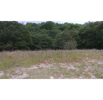 Foto de terreno habitacional en venta en  , bosques de manzanilla, puebla, puebla, 2290288 No. 01