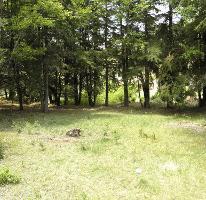 Foto de terreno habitacional en venta en  , bosques de san cayetano, mineral del monte, hidalgo, 1877376 No. 01