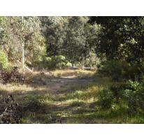 Foto de terreno habitacional en venta en  , bosques de san cayetano, mineral del monte, hidalgo, 2597818 No. 01