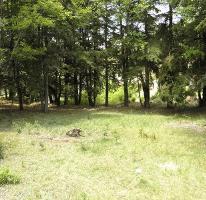 Foto de terreno habitacional en venta en  , bosques de san cayetano, mineral del monte, hidalgo, 2702834 No. 01