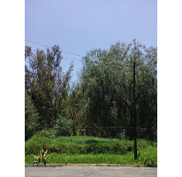 Foto de terreno habitacional en venta en  , bosques del lago, cuautitlán izcalli, méxico, 1088803 No. 01